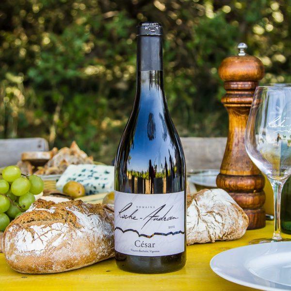 Déjeuner et dégustation de vins dans le vignoble
